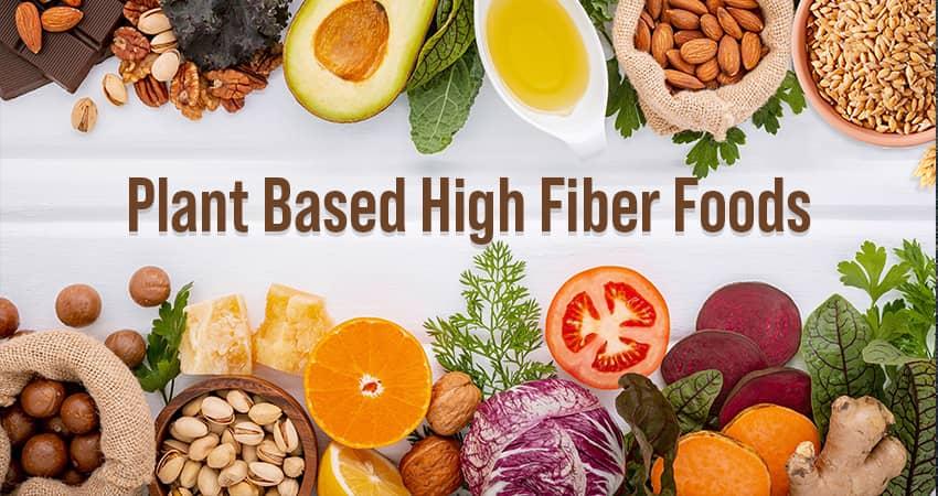 Nutrition in Plant-Based High-Fiber Foods