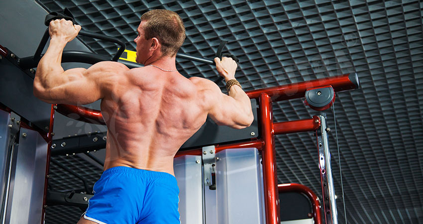 Chinups For Big Biceps Workout
