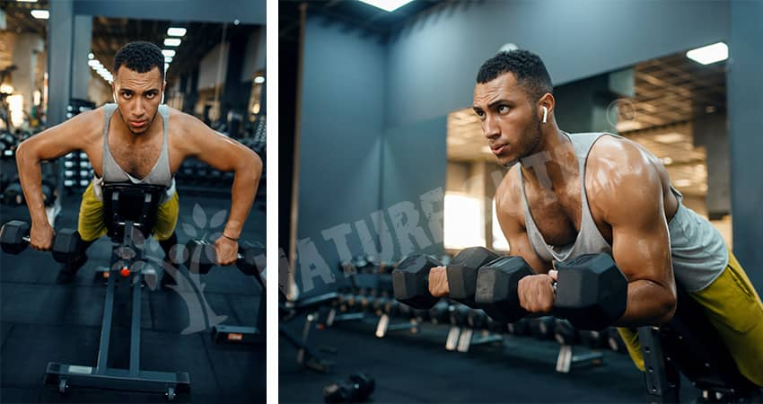 Prone Incline Bench Row Exercise