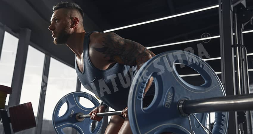 The Reverse Grip Barbell Row Exercise