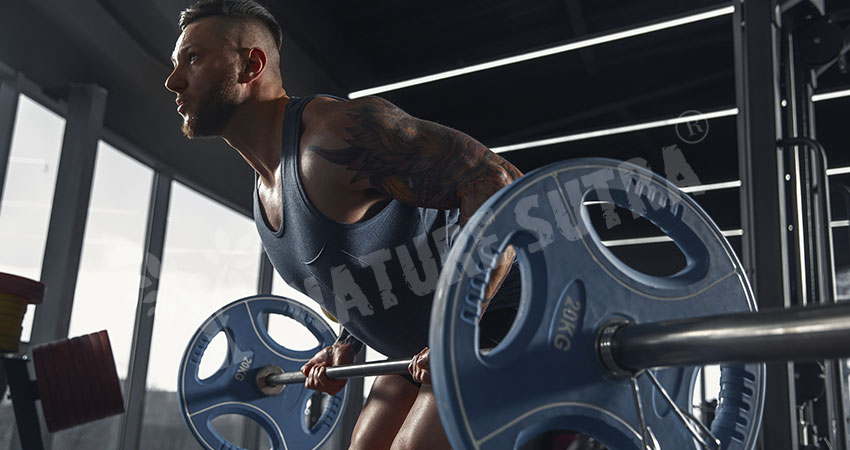 Barbell Row - Popular Lat Workout