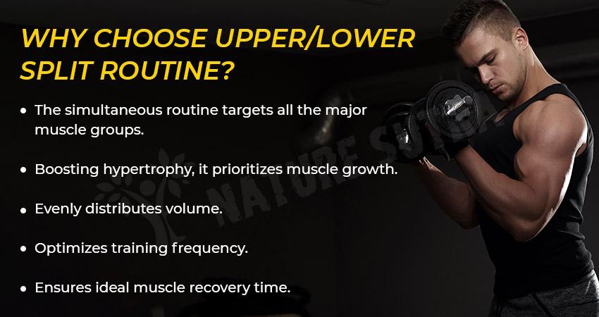 Why Choose Upper/Lower Split Routine