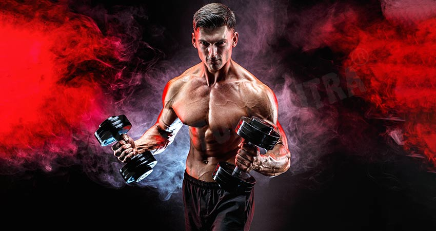 Brachialis Workouts Exercises For Aesthetic Arms