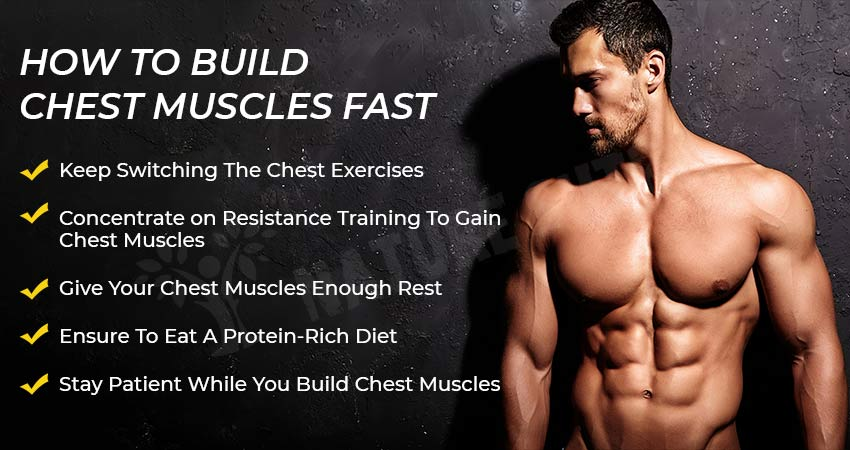 How To Build Chest Muscles Fast: The Ultimate Tips