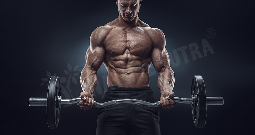 How To Build Chest Muscles Fast? Best Chest Exercises And Tips