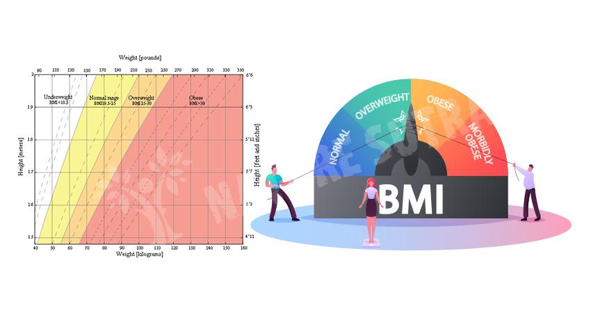 Body Mass Index - The BMI Formula