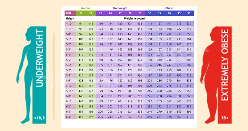 What Is A Height And Weight Ratio Chart