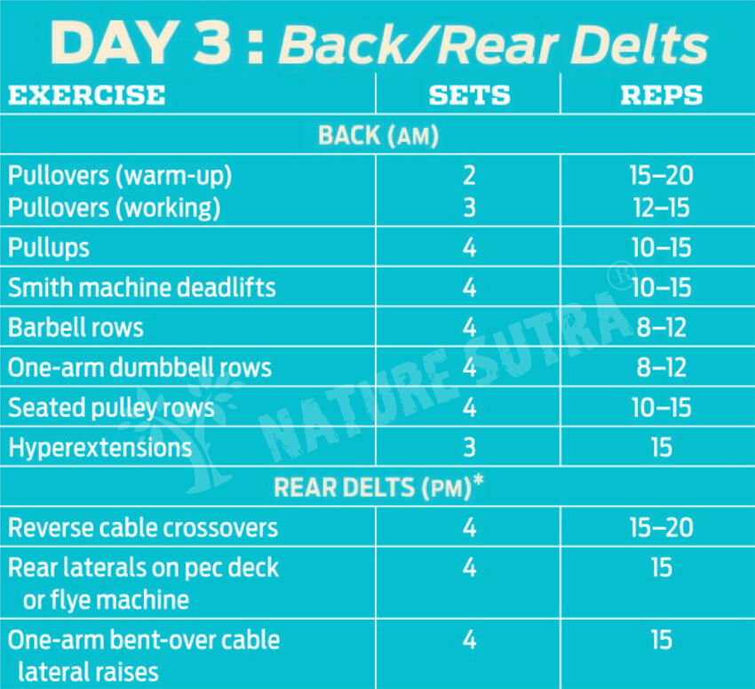 Day 3 Workout Plan for Building The Classic Physique
