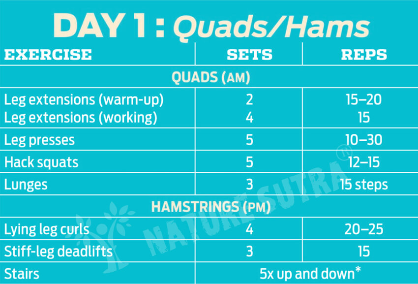 Day 1 Workout Plan for Building The Classic Physique
