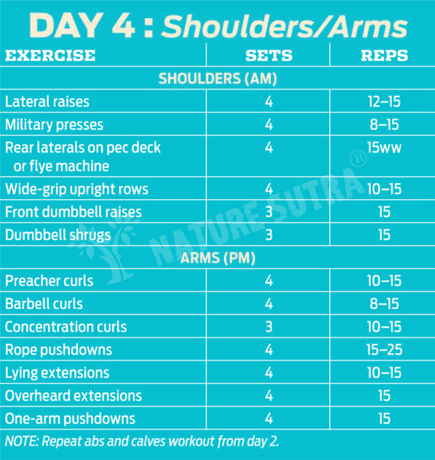 Day 4 Workout Plan for Building The Classic Physique