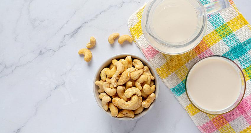 Cashew Milk- Plant-Based Milk Suitable For Beverages