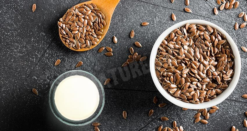 Flaxseed Milk- Suitable For People With Dairy or Nut Allergies