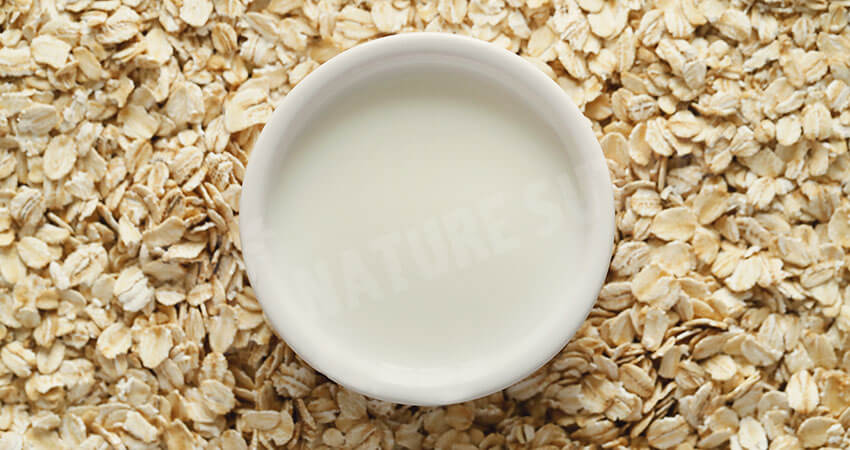 Oat Milk- An Excellent Plant-Based Milk to Prepare Teas and Lattes!