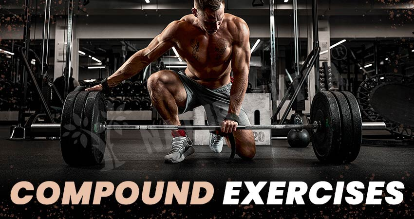 The Best Compound Exercises: Relevance And Tips